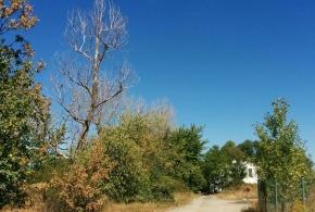 Obnova biokoridoru K Vrtilce